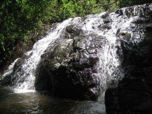 river-walk-feb-6-2012