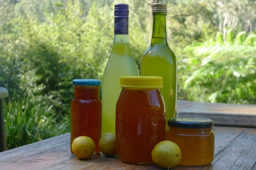 cordial-and-marmalade