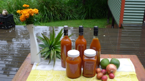 more-tamarillo-and-pumpkin-sauce