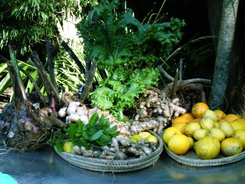 lemons,-limes-ginger,turmeric-yacon