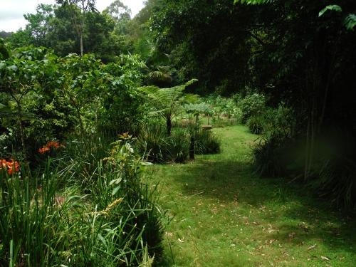 garden-after-50-mls