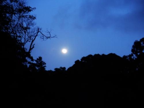 moon-setting