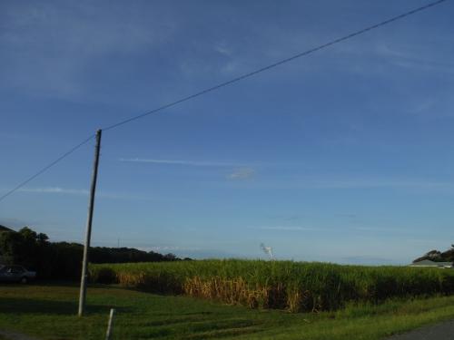 sugar-cane-and-refinery-hot-air